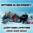 Dave Audé / Shaggy / Sting:  Just one lifetime